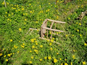 la chaise (14)